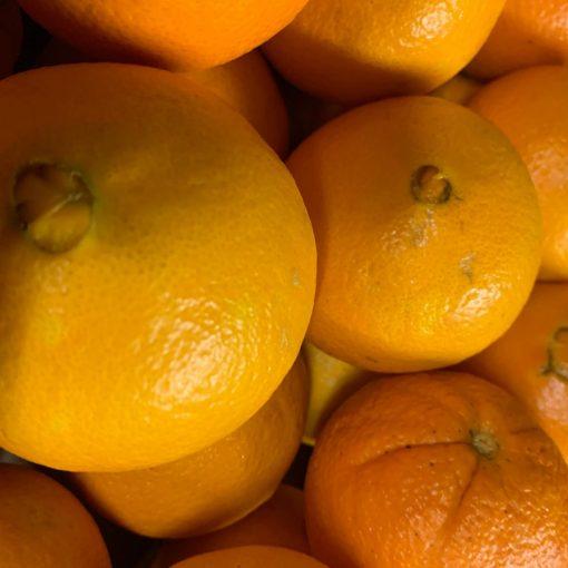 img-4755-roots-fruits-harrogate-scaled-1.jpg